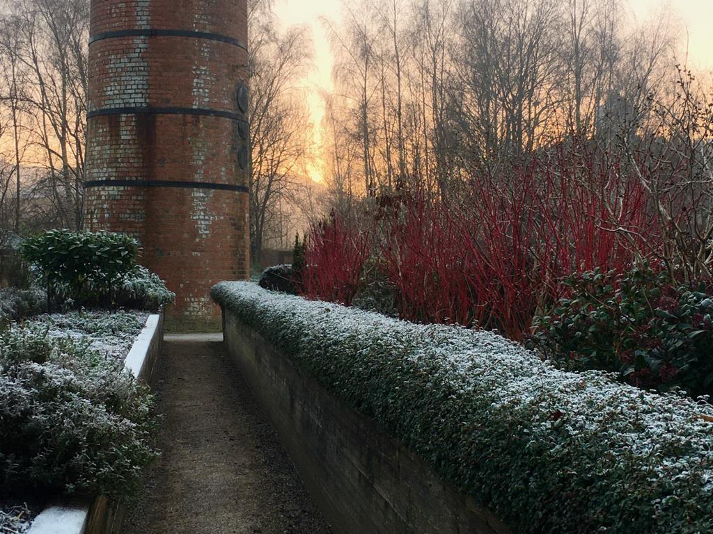 Appreciating Gardens in Winter